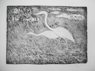 HK _Yunkaporta_ dancing Brolga etching, 2013 copy