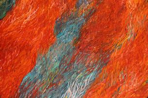 Barbara Weir Grass Seed Dreaming
