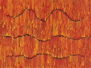 Waru Bushfire Orange 60x80cm