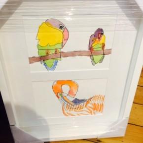 Ornithology - Conway Ginger
