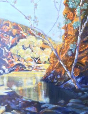 denise-campbell-australian-landscape