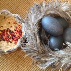 Desert Grass Baskets, Tinka's, Tjilpu's and Camp Dogs!